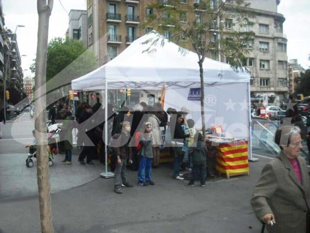 Carpa plegable de 4x6m